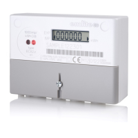 Emlite Single Phase Bi-Directional Meter 100A (Pulsed) with Extended Cover